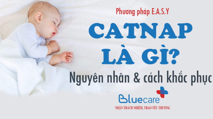 Catnap-la-gi