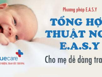 Tong-hop-thuat-ngu-easy