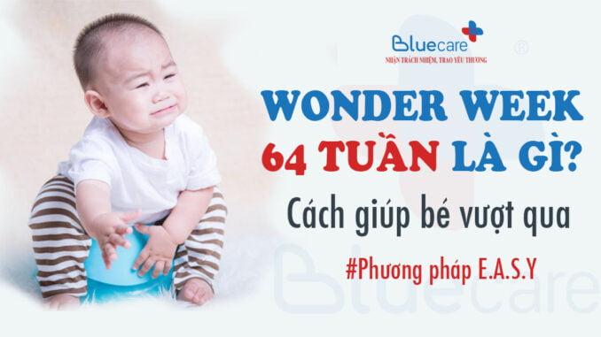 Wonder-week-64-tuan-tuoi-the-gioi-cung-nhung-nguyen-tac