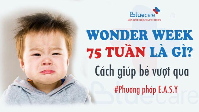 Wonder-week-75-tuan-tuoi-the-gioi-cua-nhung-he-thong