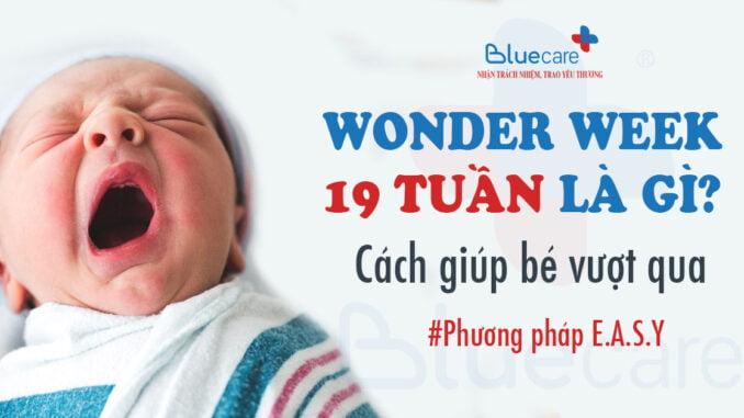 wonder-week-19-tuan-la-gi