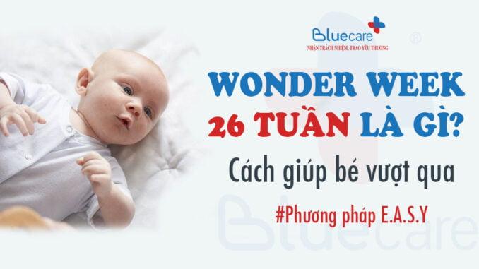 wonder-week-26-tuan-la-gi