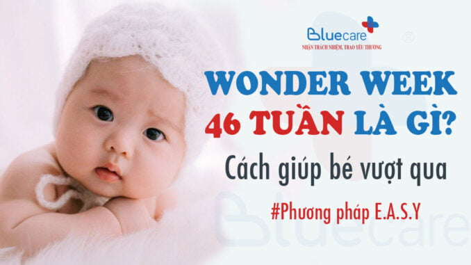 wonder-week-46-tuan-la-gi