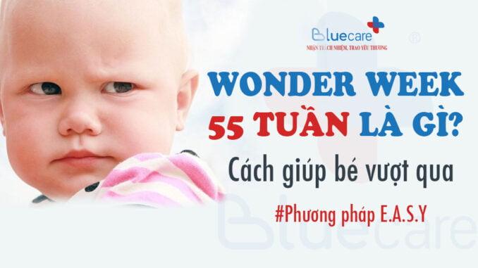 wonder-week-55-tuan-nhung-dieu-me-can-biet