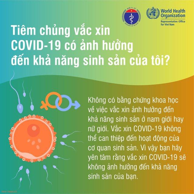 Tiêm vaccine covid-19 có ảnh hưởng đến khả năng sinh sản không?